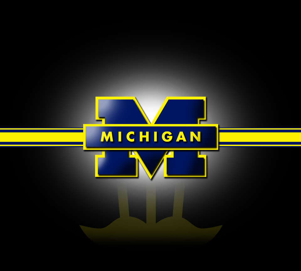 Image result for u of m pics