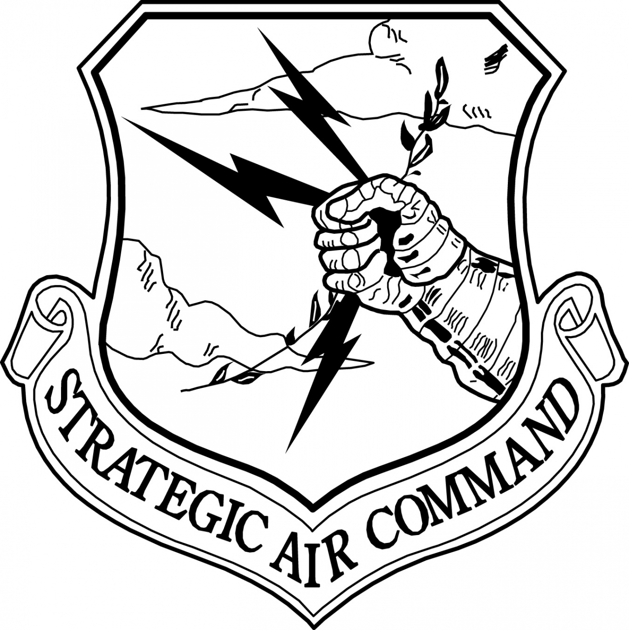 USAF Strategic Air Command