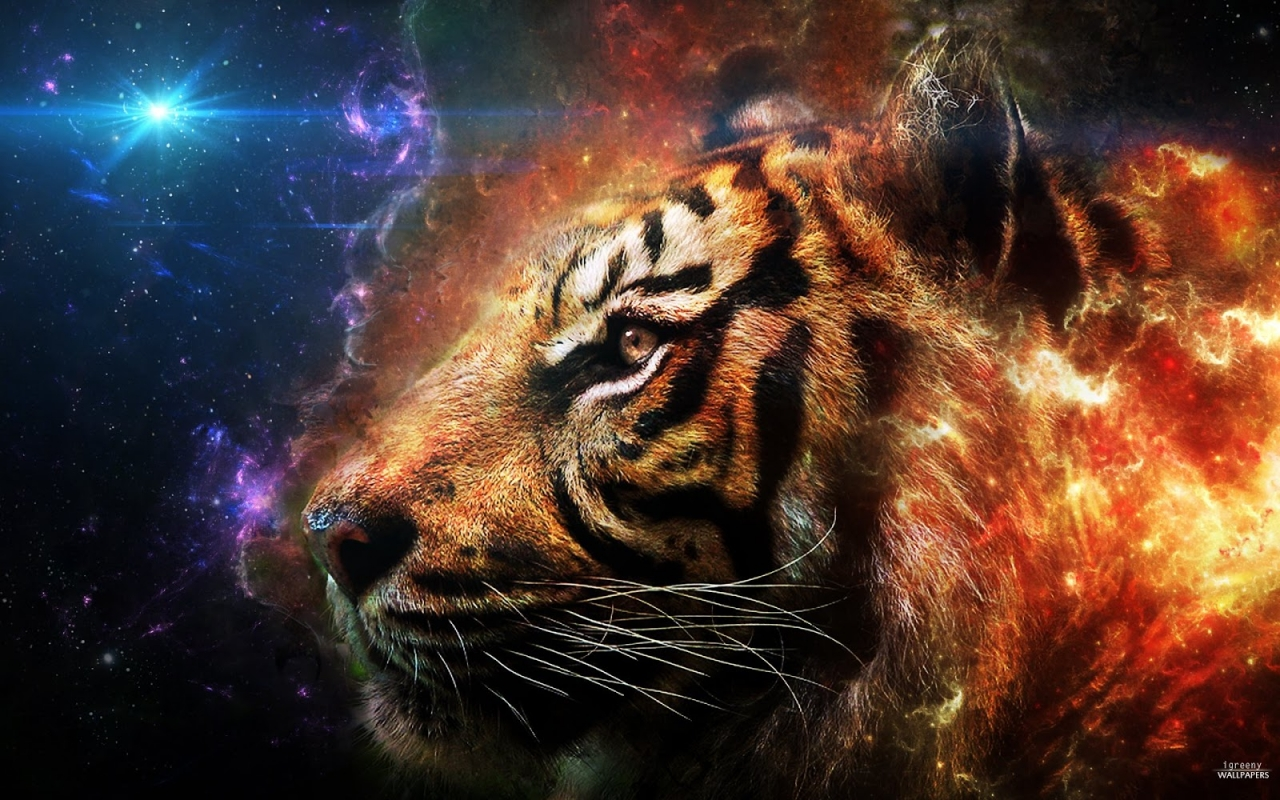 Tiger 3D Wallpapers